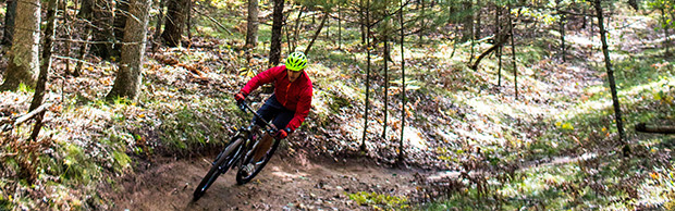 Mountain Biker Riding in Woods