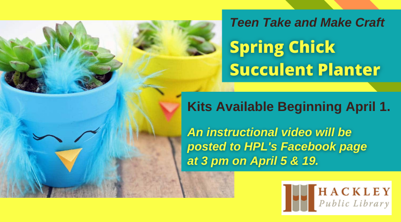 Teen Take and Make Craft – Spring Chick Succulent Planter